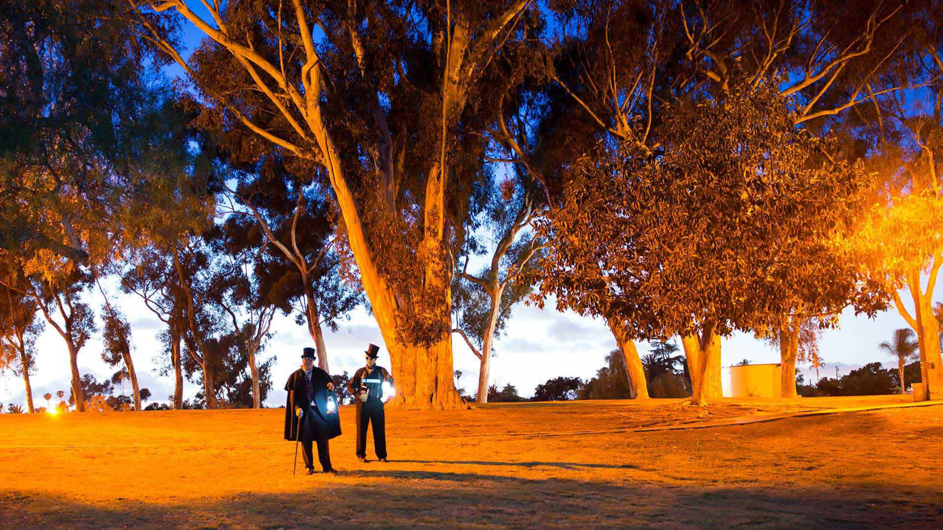 san diego ghost tour guides at night in park